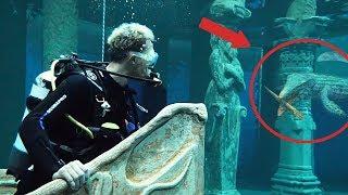 Ich ging tauchen & ein Monster kam mir nahe 😧 (+Aquaman Verlosung)