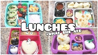 Bento styled school lunches +what she ate - Bella Boo's Lunches