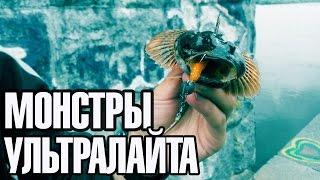 Ловля хищной рыбы на ультралайт. Лучшие моменты 2016 года.(Закончил сезон ультралайтового спиннинга, в части микроджига и твичинка голавлиных воблеров. Интересных..., 2016-11-05T18:44:47.000Z)