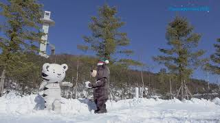 (ALL) 수호랑과 반다비의 눈싸움 | Snowball fight between Soohorang & Bandabi