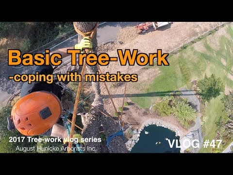 Basic Tree-Work  -coping with mistakes