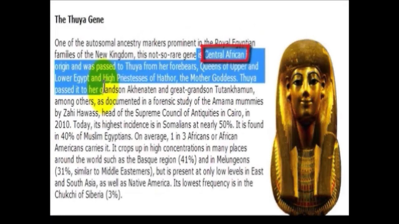 DNA Consultants Confirms African Origin for Ancient Egyptians {shorter  version} HD
