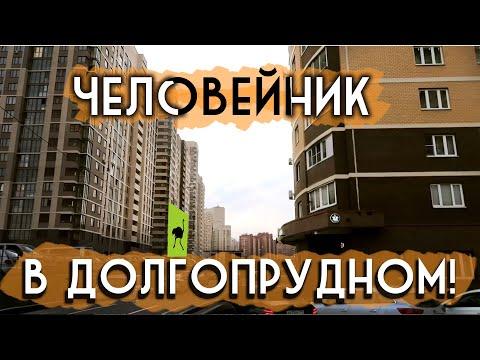 ДОЛГОПРУДНЫЙ / Курьерские будни Delivery Club