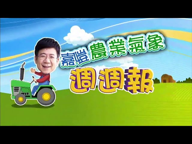 2020.12.14─嘉愷農業氣象週週報