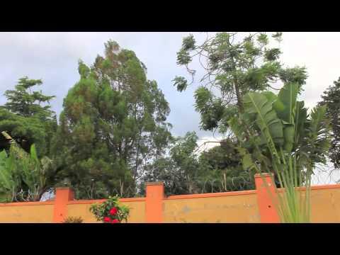 Living Uganda