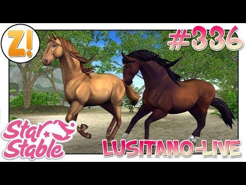 Star Stable [SSO]: Dressurstunde mit Fabi und dem neuen Lusitano! | #336 | Let's Play [DEUTSCH]