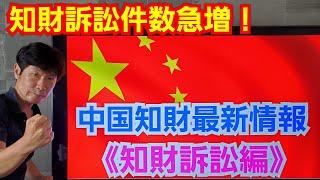 動画 知財訴訟急増!中国知的財産最新情報【知財訴訟編】