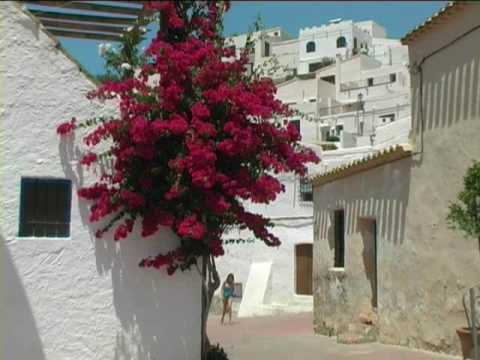 Bedar Almeria