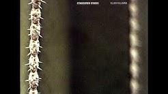 Ellen Fullman - Staggered Stasis-Section 1