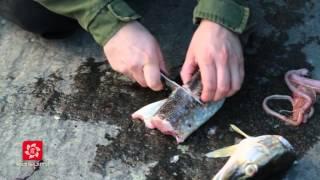 Обзор серии японских рыболовных ножей G.Sakai: Sabi Knife