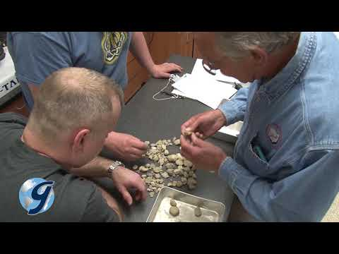 Gilson Construction And Materials Training And Certification
