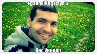 Eganovblog Days 5 дорога в Лес Универ Обнинск