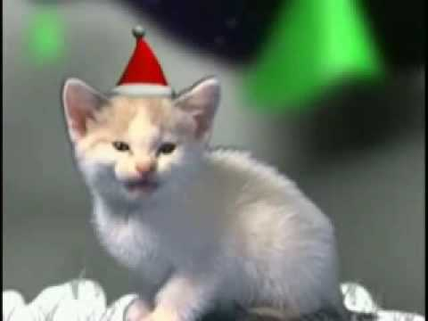 Foto Di Natale Animate Gratis.Cartoline Di Natale Cartoline Natalizie A Natale Auguri Natalizi Cartoline Virtuali Buon Natale Animate Gratis Di Cartoline Net