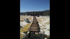 ABANDONED!! Black Canyon City, AZ Greyhound Race Track!! Part 2!!!! The MISSED!!!!