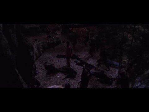SHINOBI - Gennosuke Kougas Fighting Style