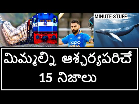 Top 15 Unknown Facts in Telugu | Amazing and Interesting Facts | Part 2 | Minute Stuff