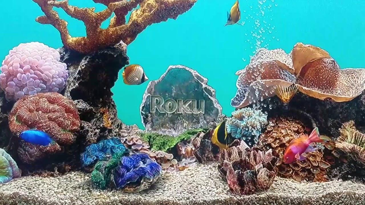 Aquarium SCREENSAVER fullscreen- ROKU TV