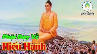 Phật Dạy Về Hiếu Hạnh - Chữ Hiếu Trong Đạo Phật - Làm Sao Để Báo Hiếu Công Ơn Cha Mẹ Phần 4