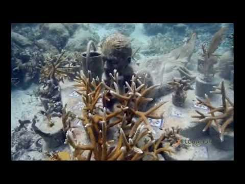Jason deCaires Taylor on Mega structures Discovery Channel