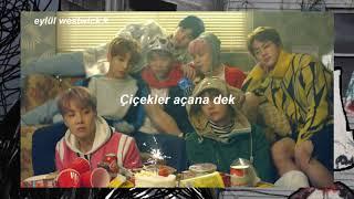 BTS - Spring Day (Türkçe Çeviri)