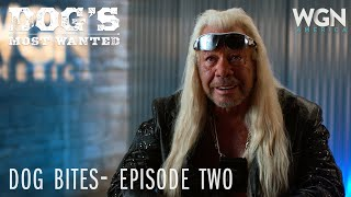 Dog's Most Wanted | Dog Bites: Episode Two | WGN America