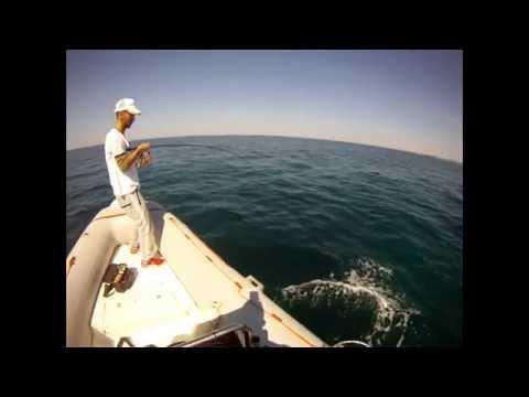 Dentice Monster Spinning Offshore con attacco in diretta (HD)