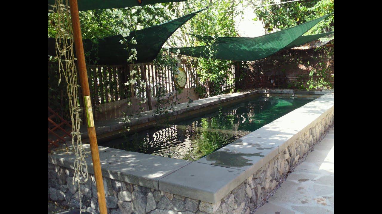 Swim Jet Pool By Huntington Pools Amp Spas Youtube