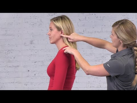 Static Postural Assessments