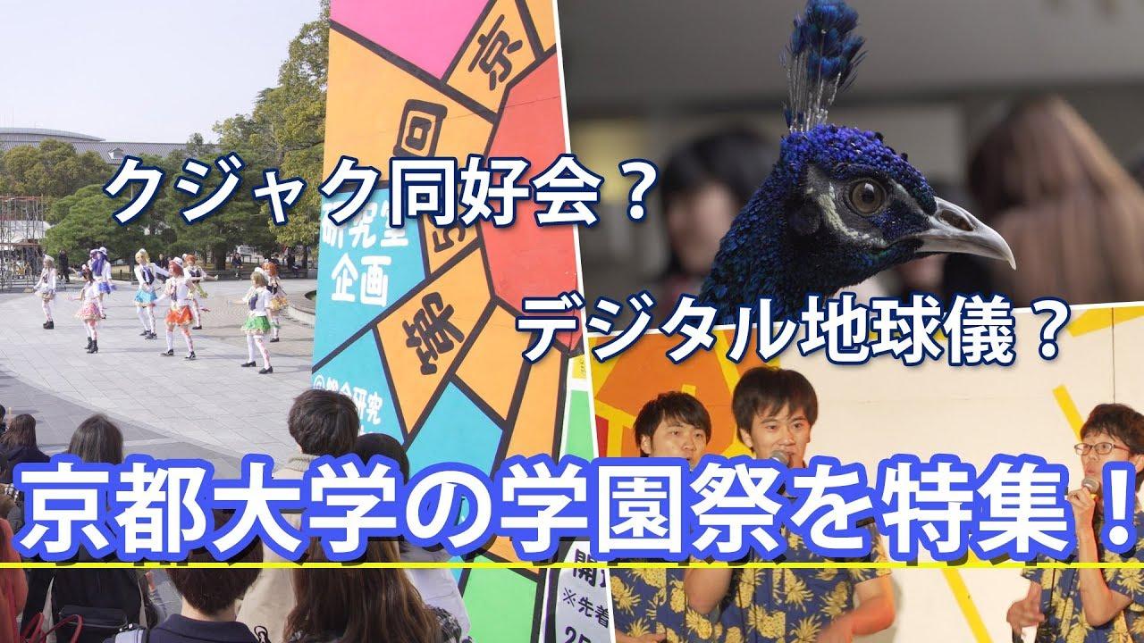 京都大学の学園祭「11月祭」をリポート!