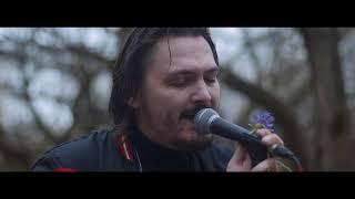 Смотреть клип Intelligency - Forest Live