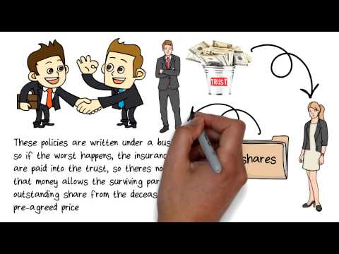 Shareholder protection for limited company Directors
