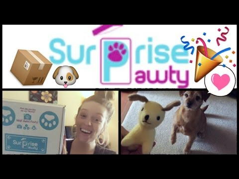 surprise-unboxing-🎉-by-surprise-pawty-box-•-2017-•-the-best-customizable-dog-box!-•-fabb-tv