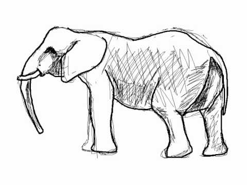 Cómo dibujar un elefante paso a paso - YouTube