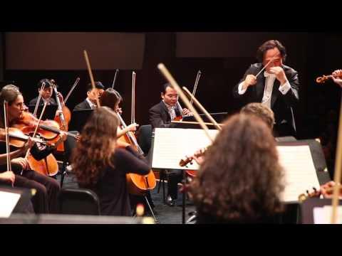 Dream Orchestra Brahms Violin Concerto