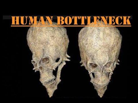 Mystery Of The Human Bottleneck - Prof Simon