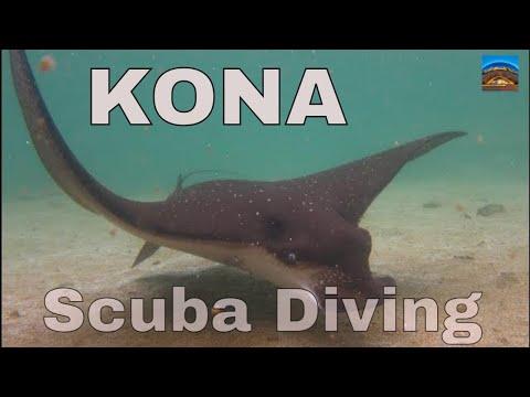 hawaii-big-island---kona-scuba-diving-gopro-hd---awesome!!!