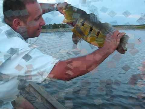 Pesca Camatagua A.B.P.P