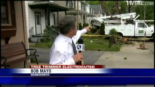 Tree trimmer electrocuted in Edgeworth