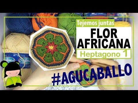 FLOR AFRICANA HEPTAGONAL 1/2 (flor africana de siete lados) | TEJEMOS JUNTAS?
