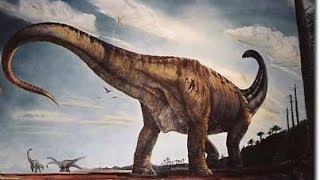 """Mundo Saurio: """"El Argentinosaurus"""""""