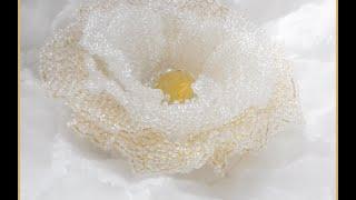 Мастер-класс роза из бисера.материалы(Вводные урок подробнейшего видео мастер-класса по созданию цветка из бисера на леске., 2015-05-28T05:53:05.000Z)