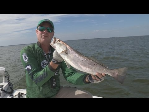 Speckled trout on the texas coast doovi for Trout fishing in texas