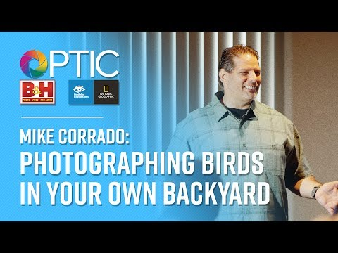 OPTIC 2017: Mike Corrado | Photographing Birds In Your Own Backyard