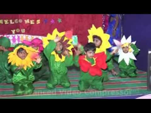 Little Stars pre School