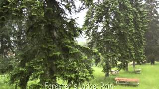 A Forest Camp near Black Sea (Turkey, June 2011) [2011-06-24 bis 06-26 Forest Black Sea.mp4]