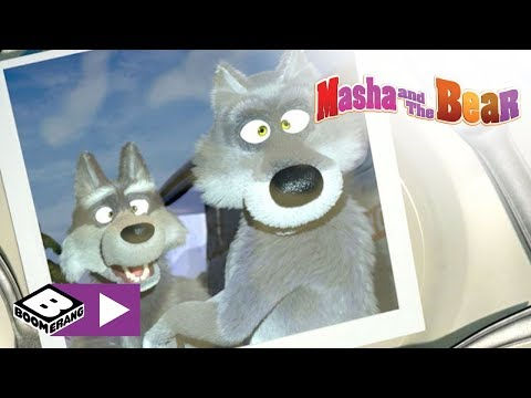 Masha and The Bear | Say Cheese! | Boomerang Africa