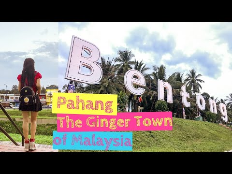 Bentong Pahang: Trip to The Ginger Town in Malaysia [Small Girl Big World]