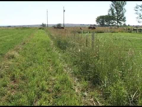 Conclusion | Managing Grazing on Small Acreages Part 10