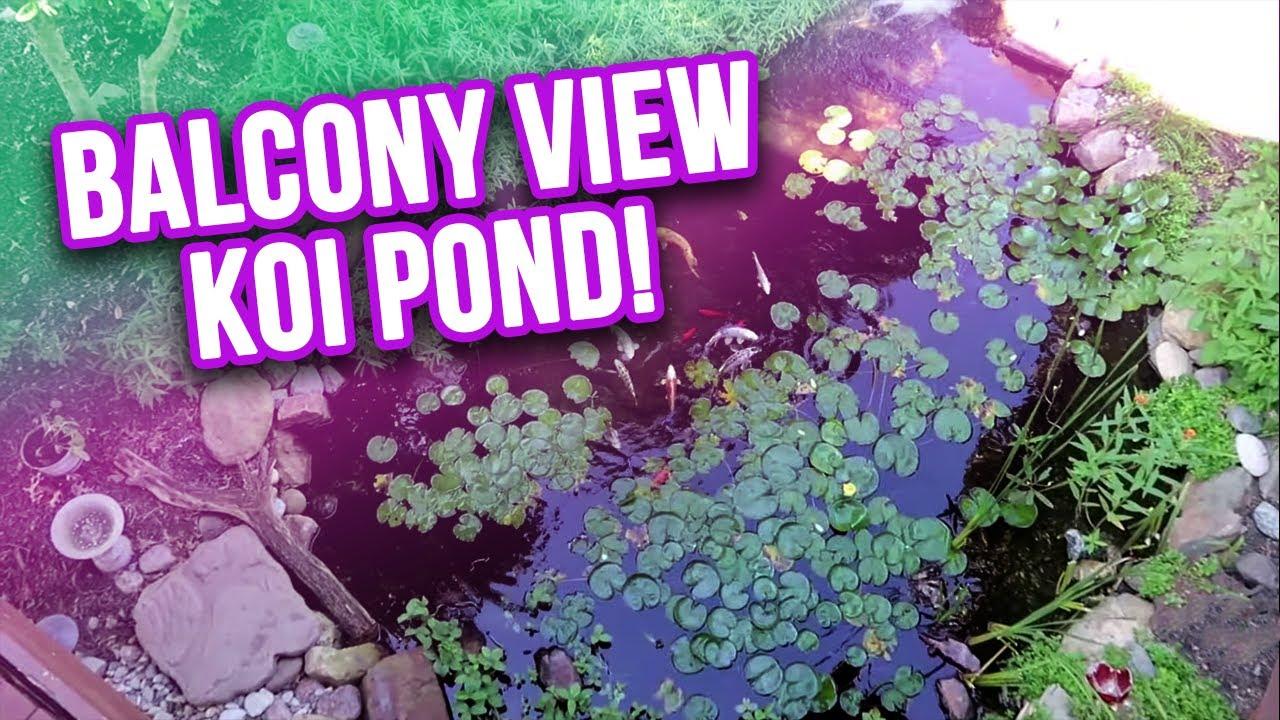 Sweet *KOI POND* Views from a Balcony!