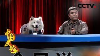 《中国文艺》 20190124 迎新春 喜剧有新人  CCTV中文国际